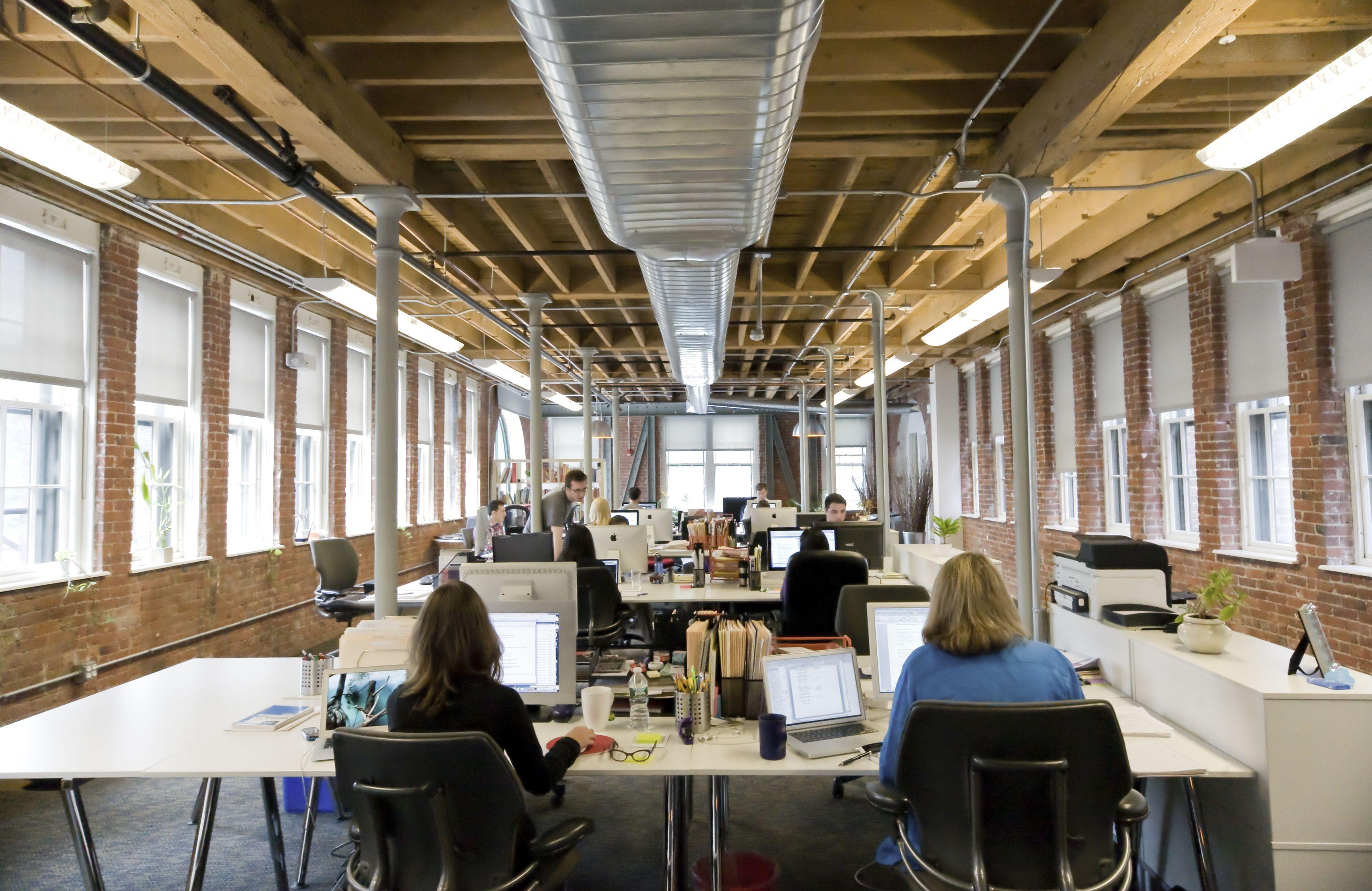 Piante Ufficio Open Space : 7 consigli per lavorare bene negli open space bigodino