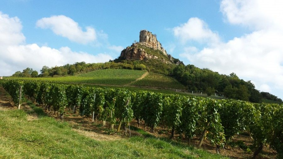 weekend autunno in Francia: le strade del vino