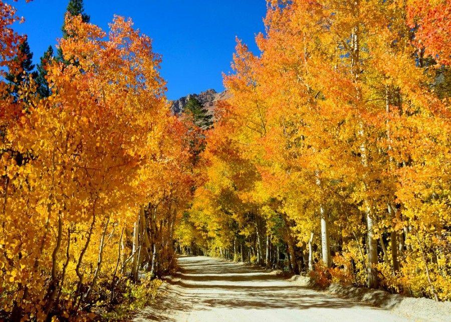 Le migliori destinazioni di novembre