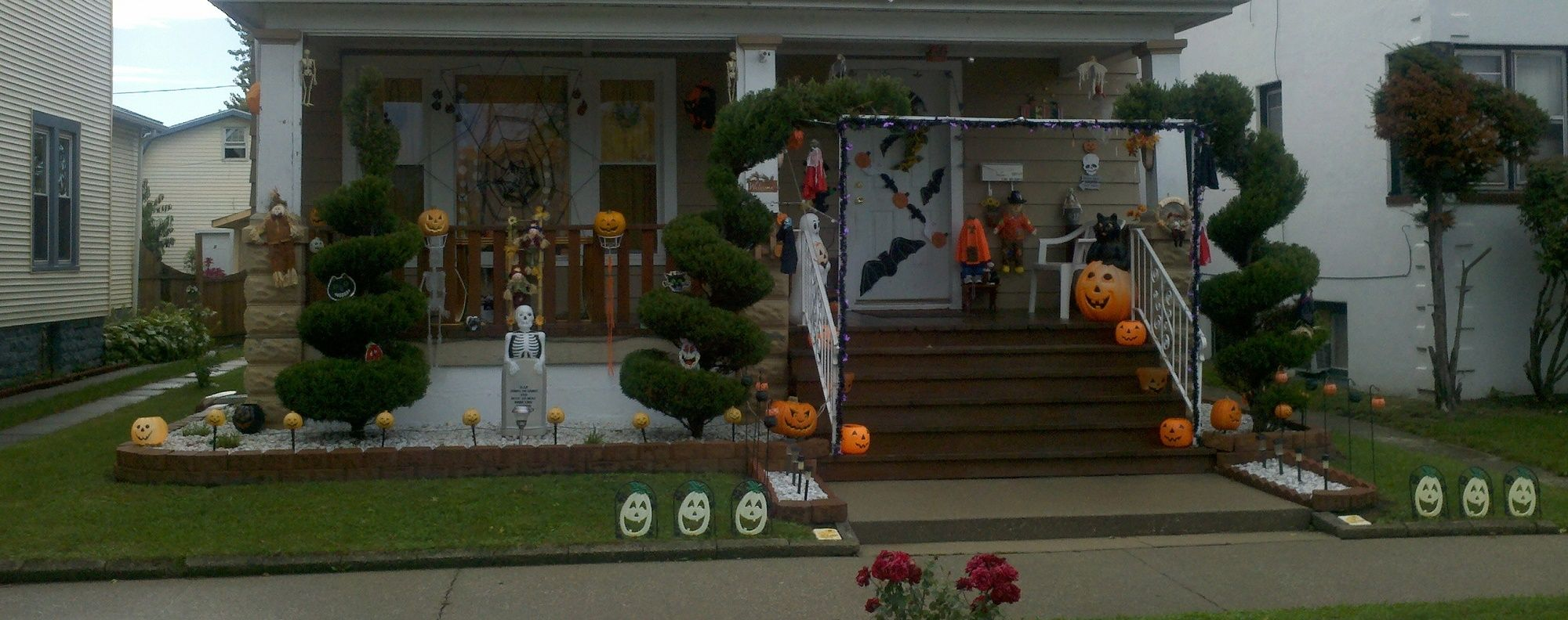 5 decorazioni di halloween perfette per il giardino bigodino for Decorazioni halloween finestra