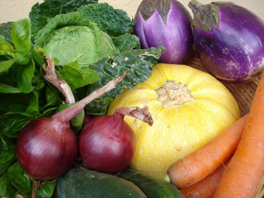Quale frutta e verdura comprare ad ottobre bigodino - Quale cucina comprare ...