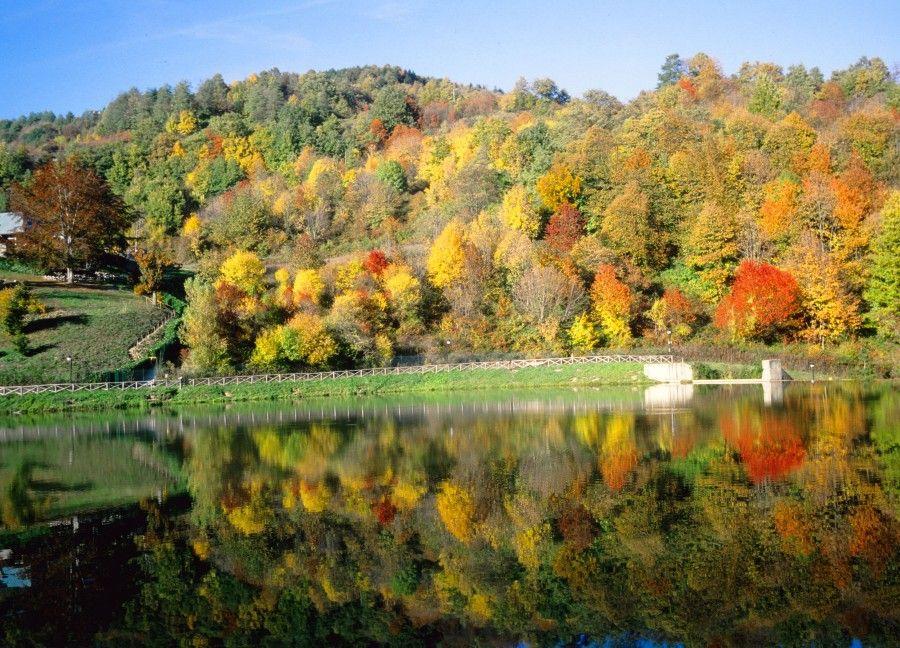 2-autunno-montepiano
