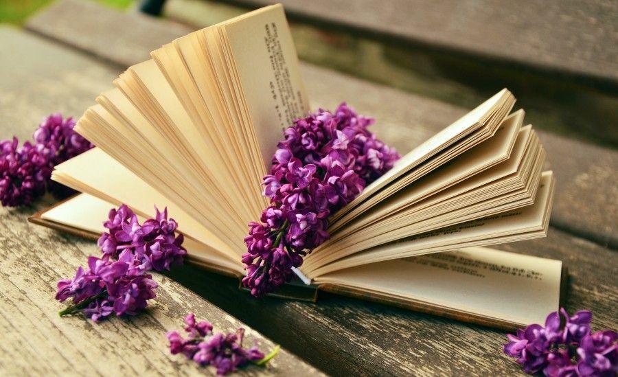 Libro_immagine-copertina