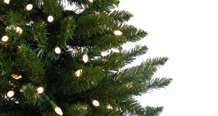 E 39 meglio un albero di natale vero o finto bigodino for Albero di natale vero