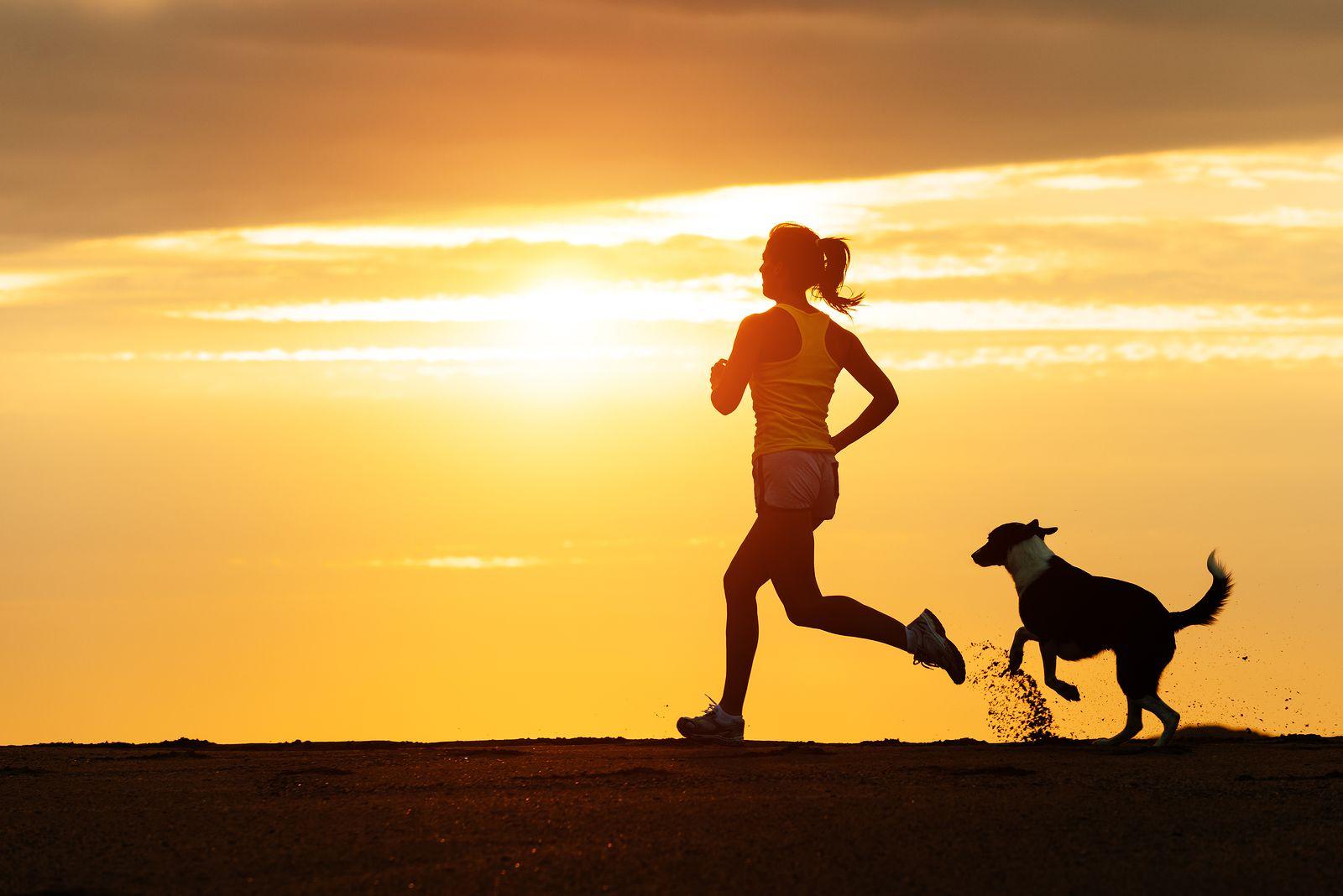 5 consigli per correre con il cane