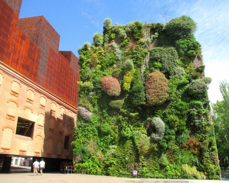 Scopri come realizzare mini giardini verticali bigodino - Giardino verticale madrid ...