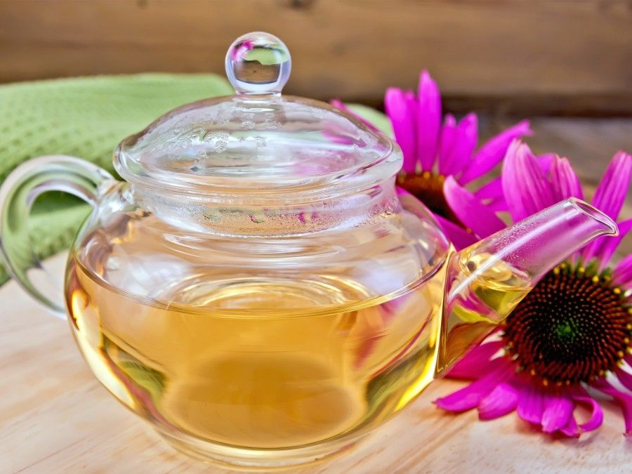 echinacea_tea-1920x1440