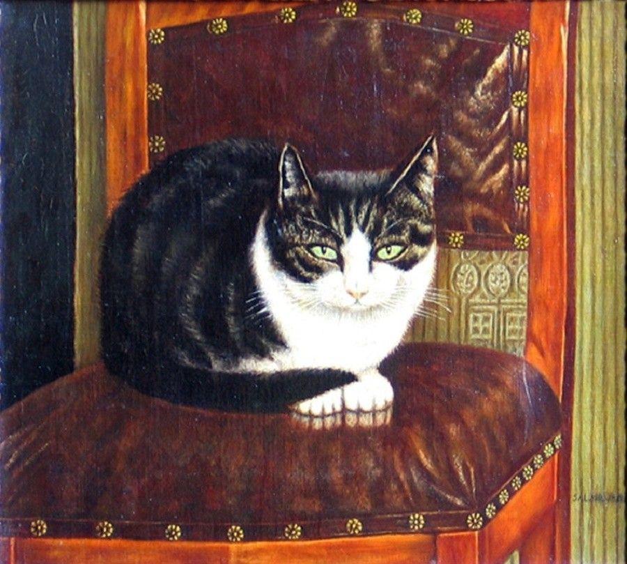museo-gatti