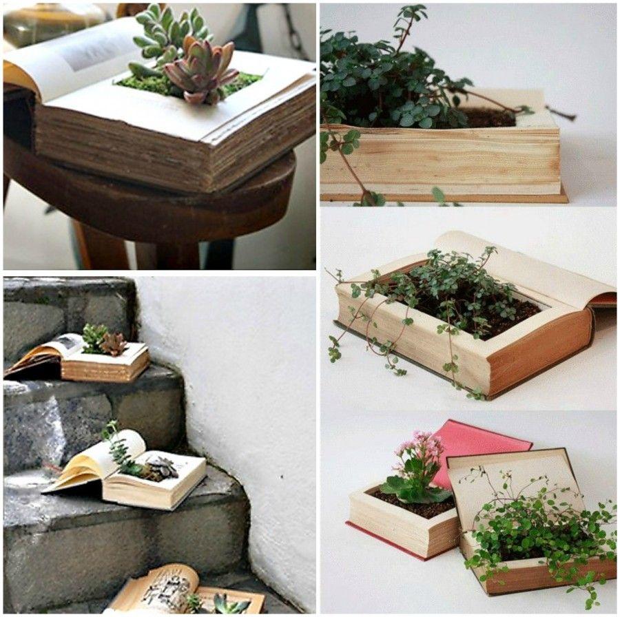 Diy piante come vasi per piante