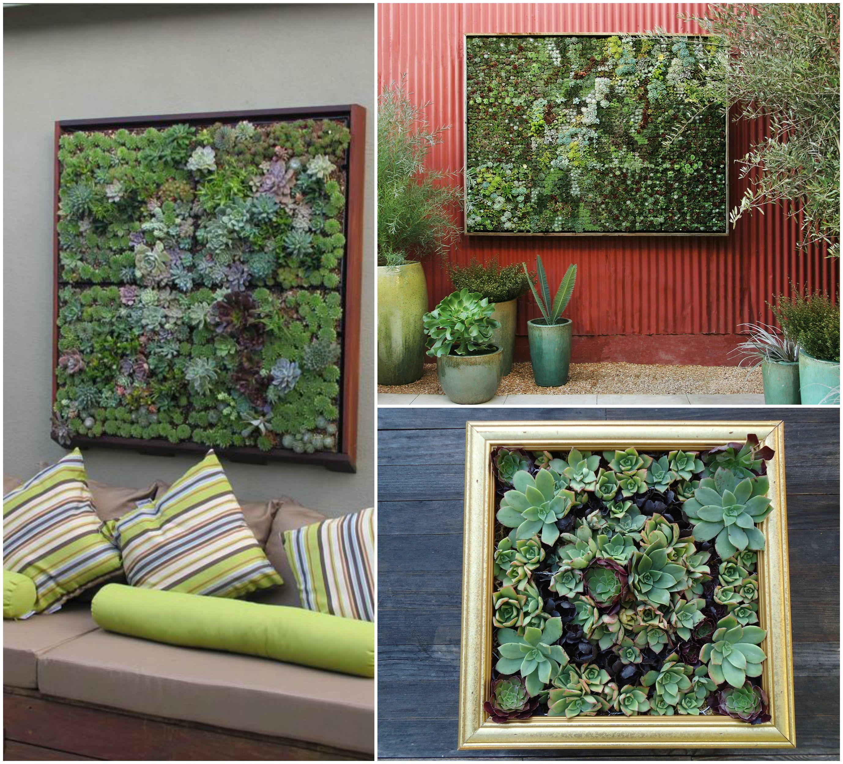 Scopri come realizzare mini giardini verticali immagine for Quadri verticali