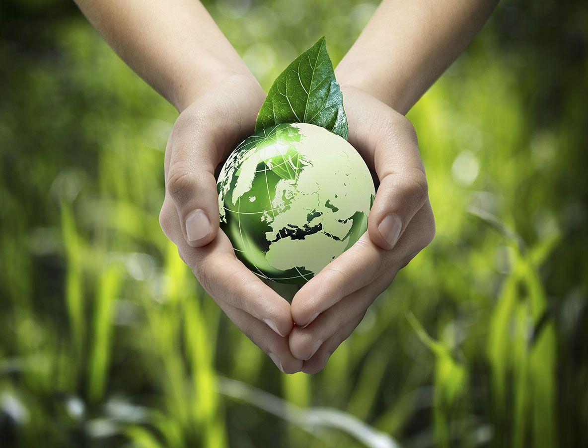 eco-friendly1