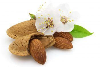 Perché dovremmo mangiare ogni giorno 30 grammi di mandorle