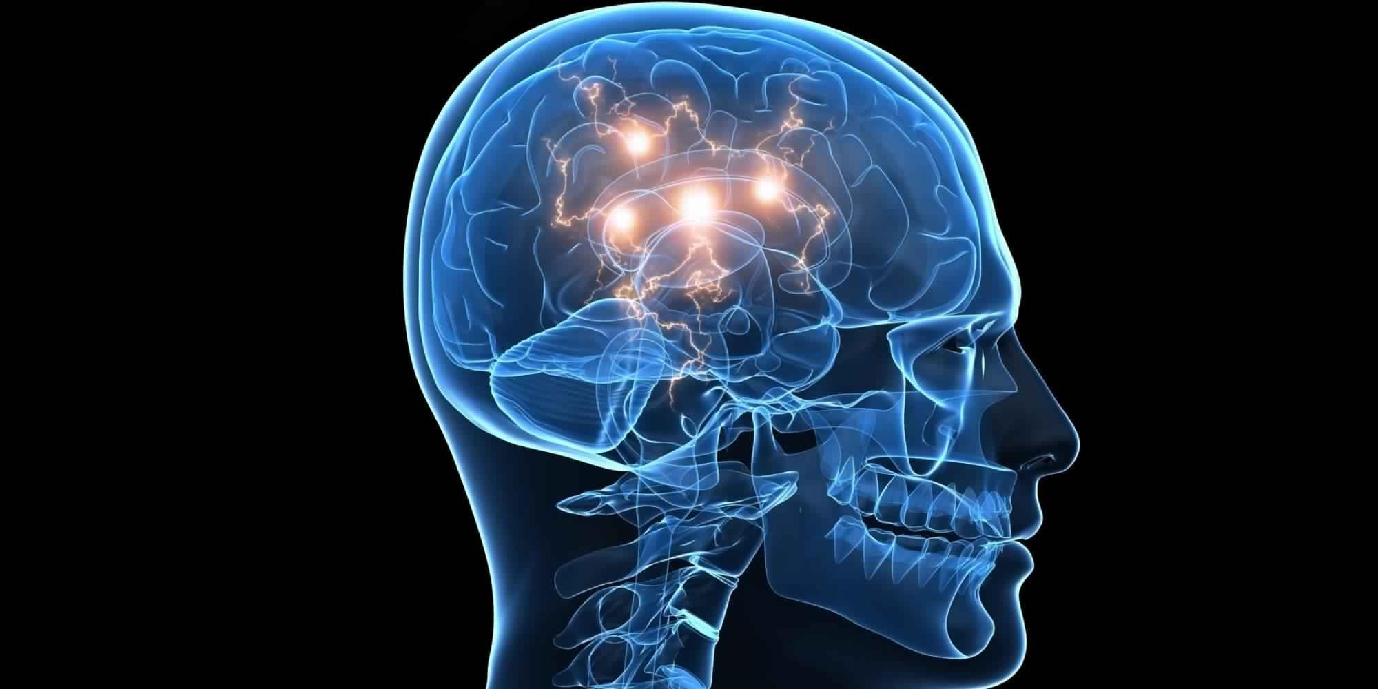 Come muoiono le cellule del cervello per effetto della cocaina