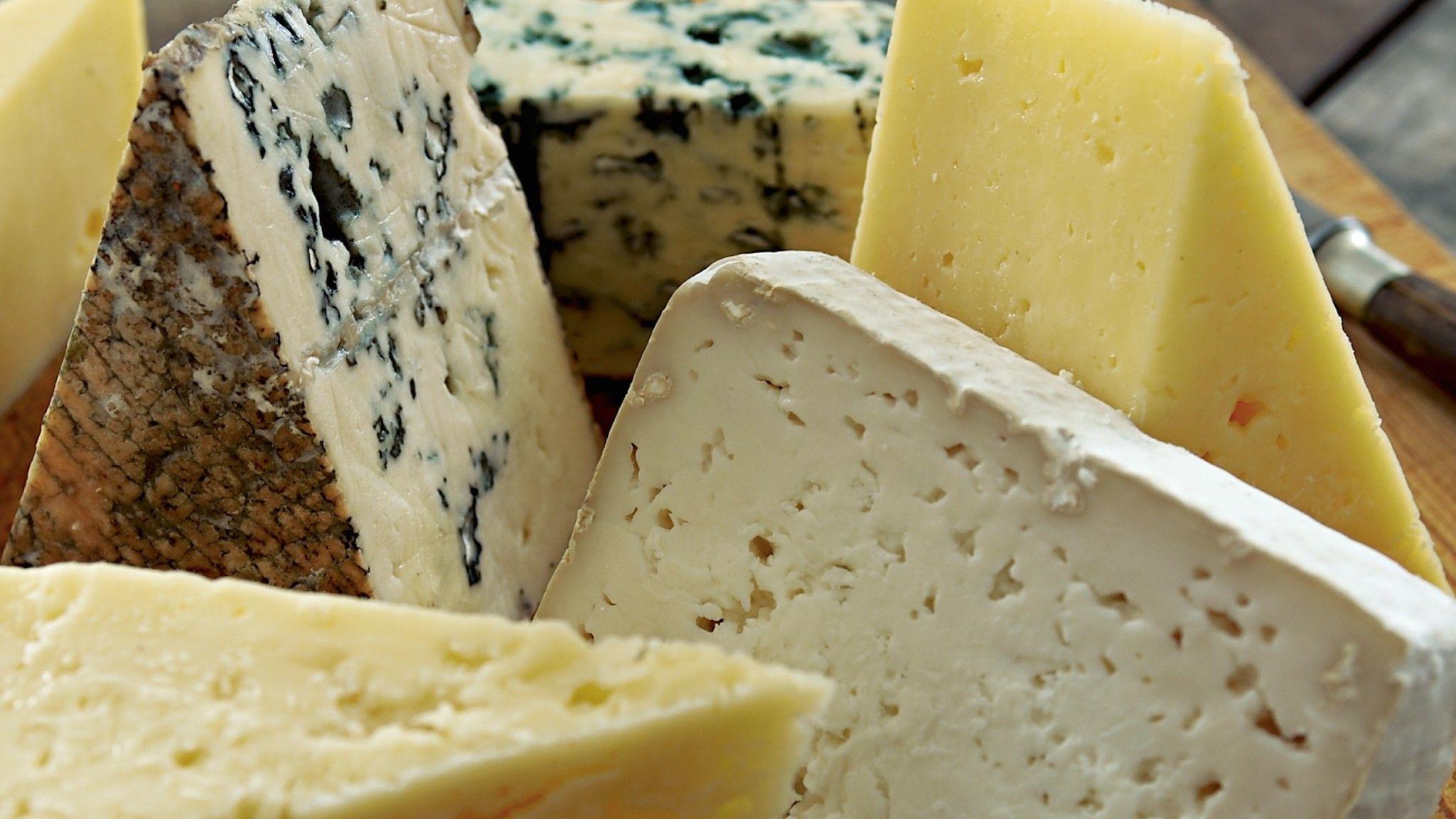 formaggi senza lattosio