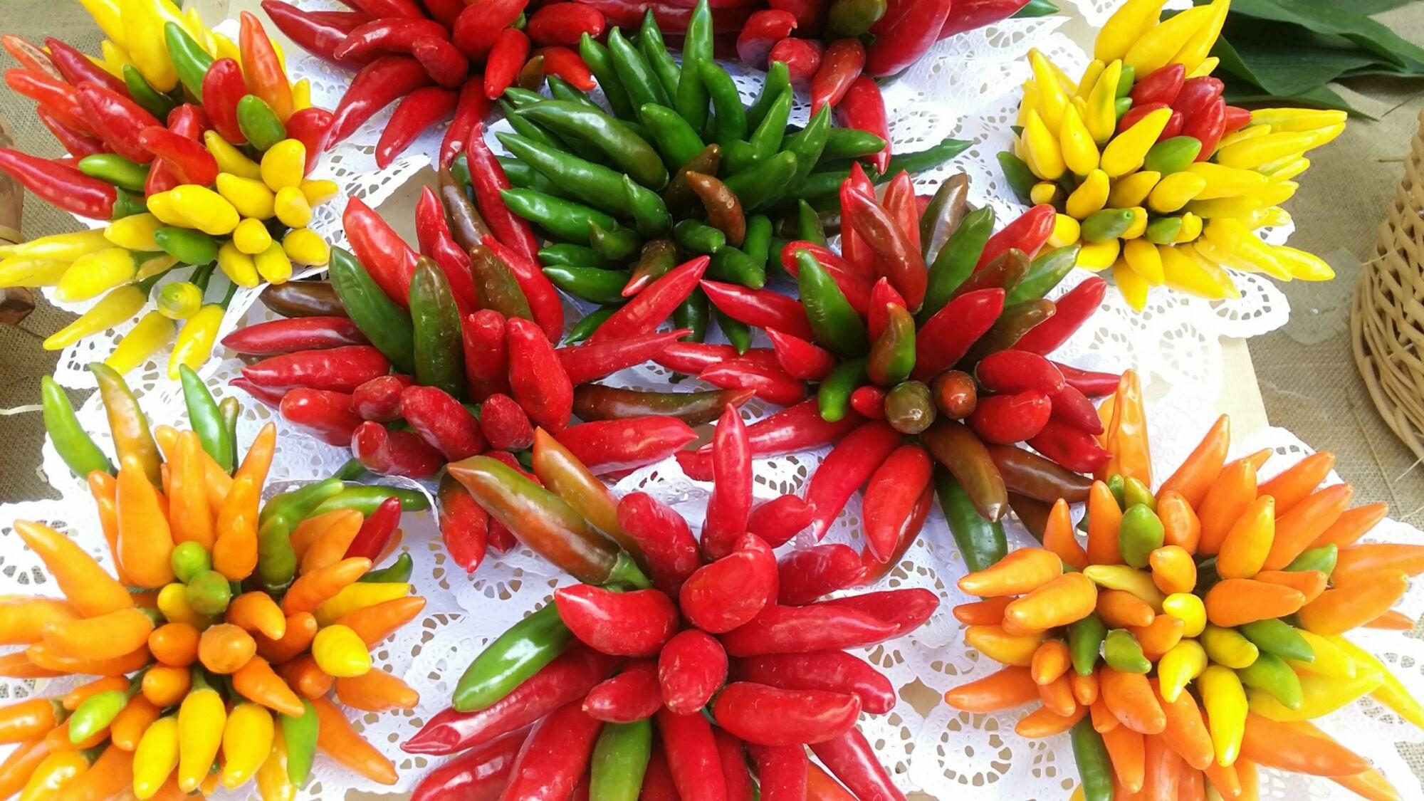 Qual è il peperoncino più piccante del mondo?