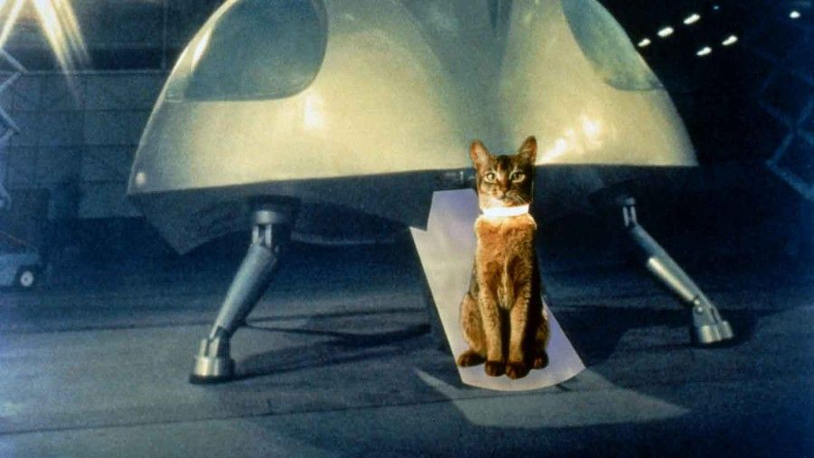 The-Cat-From-Outer-Space-01-DI-1