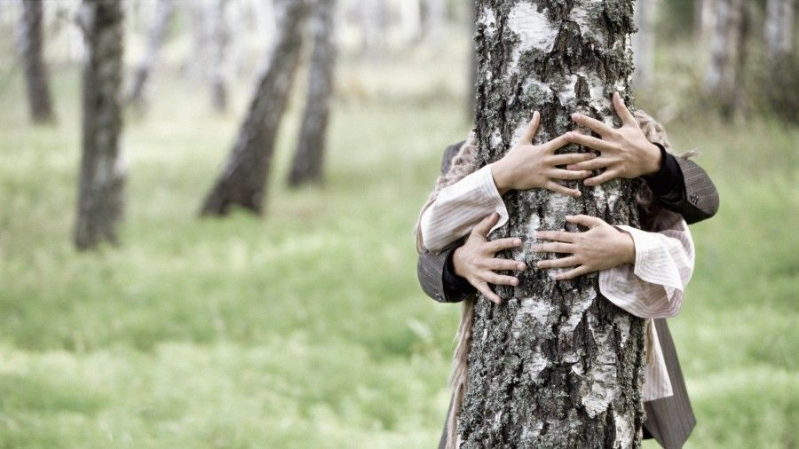 san-valentino-albero2