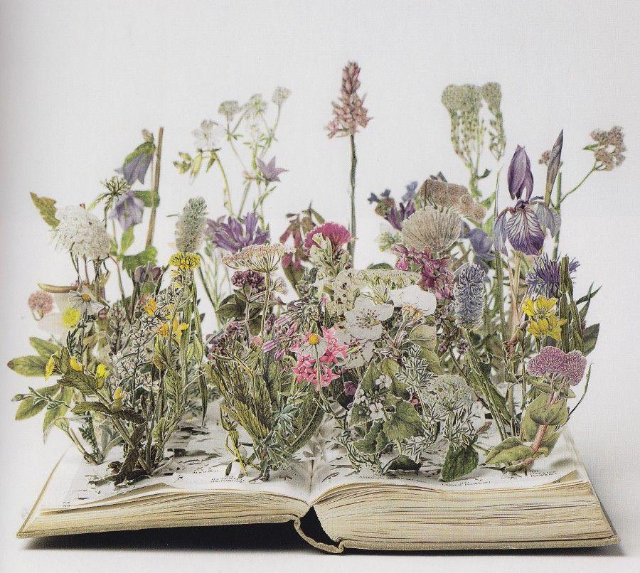 Diy come realizzare i libri pop up bigodino - Libri da colorare di fiori ...