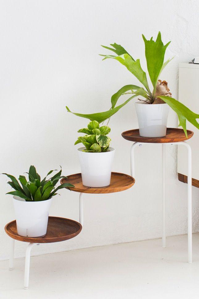 10 soluzioni Ikea per arredare casa con le piante Bigodino