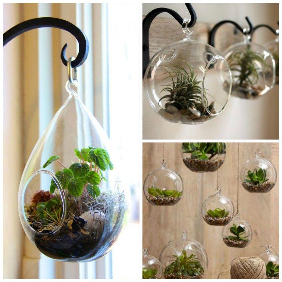 Vasi pensili in casa ed subito primavera bigodino - Vasi ornamentali da interno ...