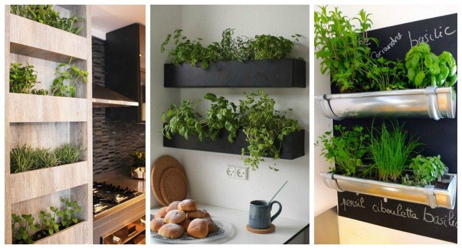 Come decorare la tua cucina con le erbe aromatiche | Bigodino