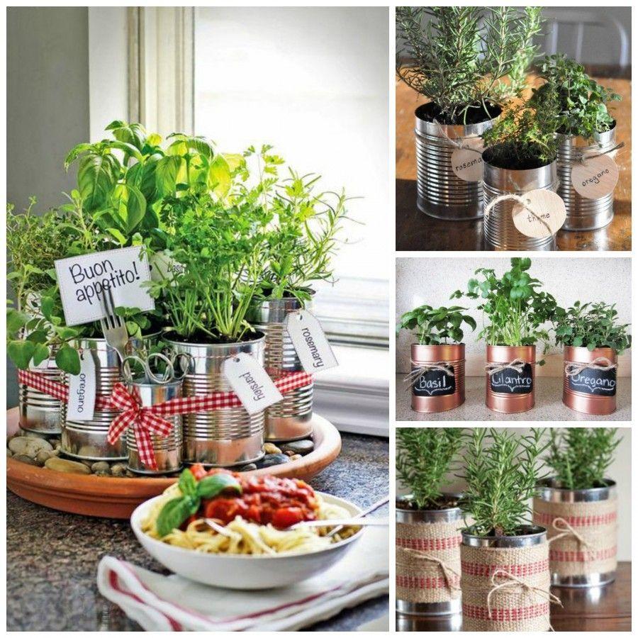 Come decorare la tua cucina con le erbe aromatiche bigodino - Barattoli cucina colorati ...