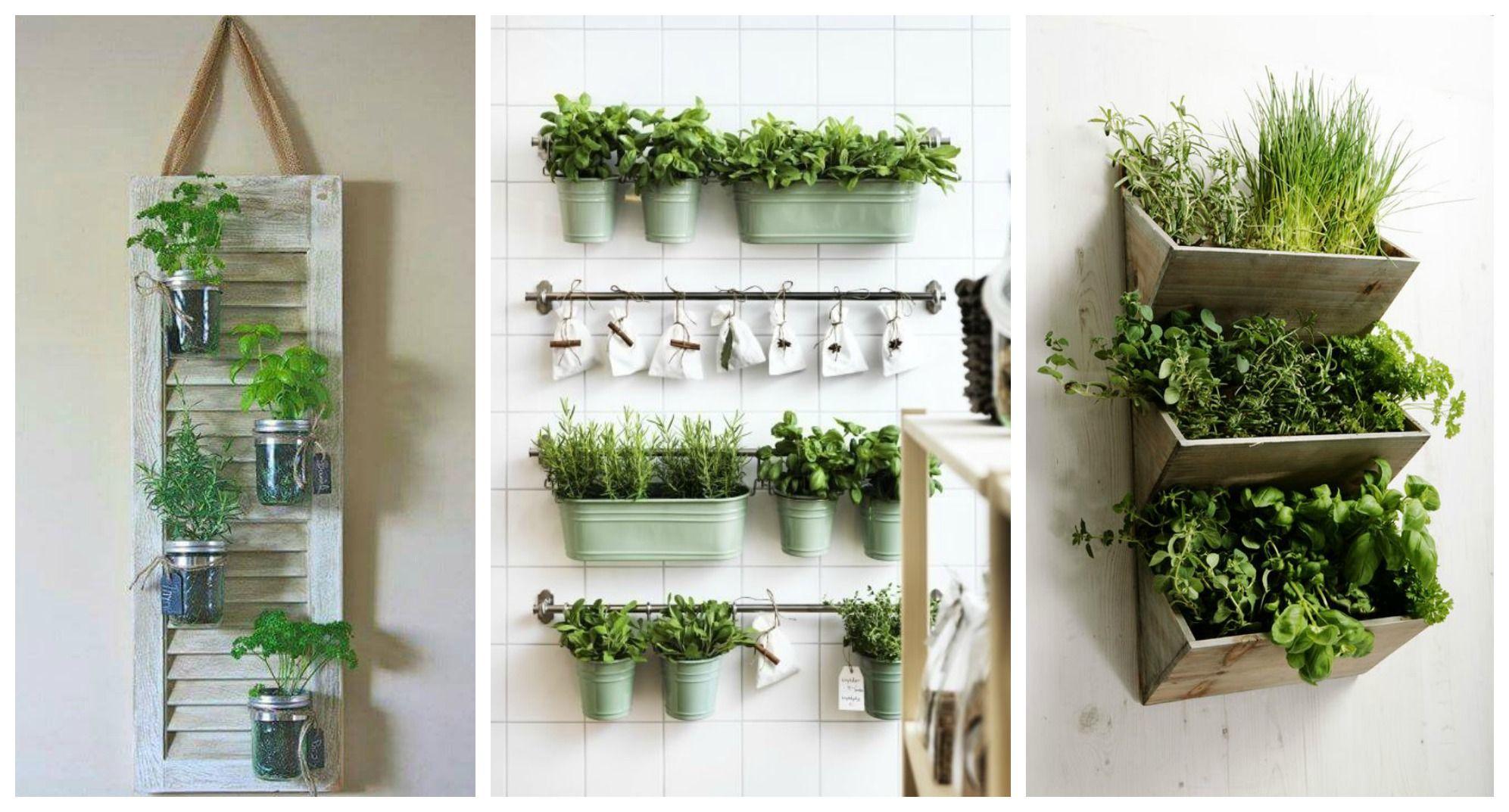 Come decorare la tua cucina con le erbe aromatiche - Immagine 397137 ...