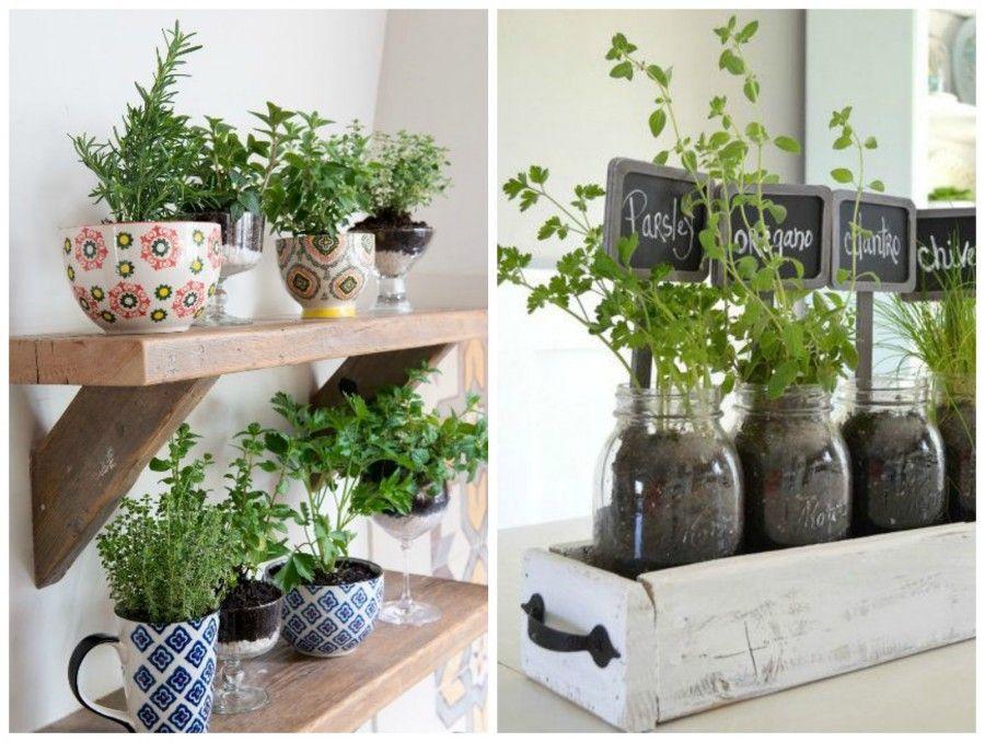 Come decorare la tua cucina con le erbe aromatiche bigodino - Erbe aromatiche in casa ...