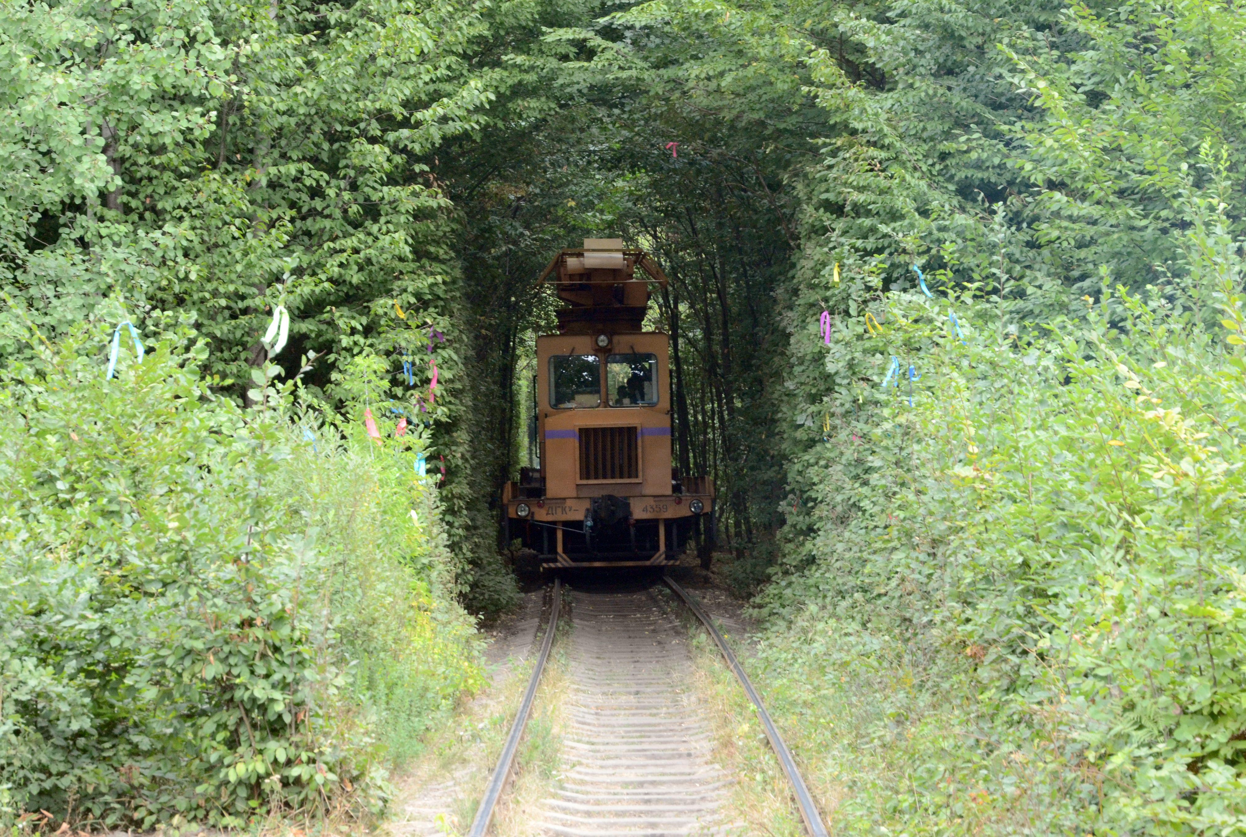 Tunnel of love Train