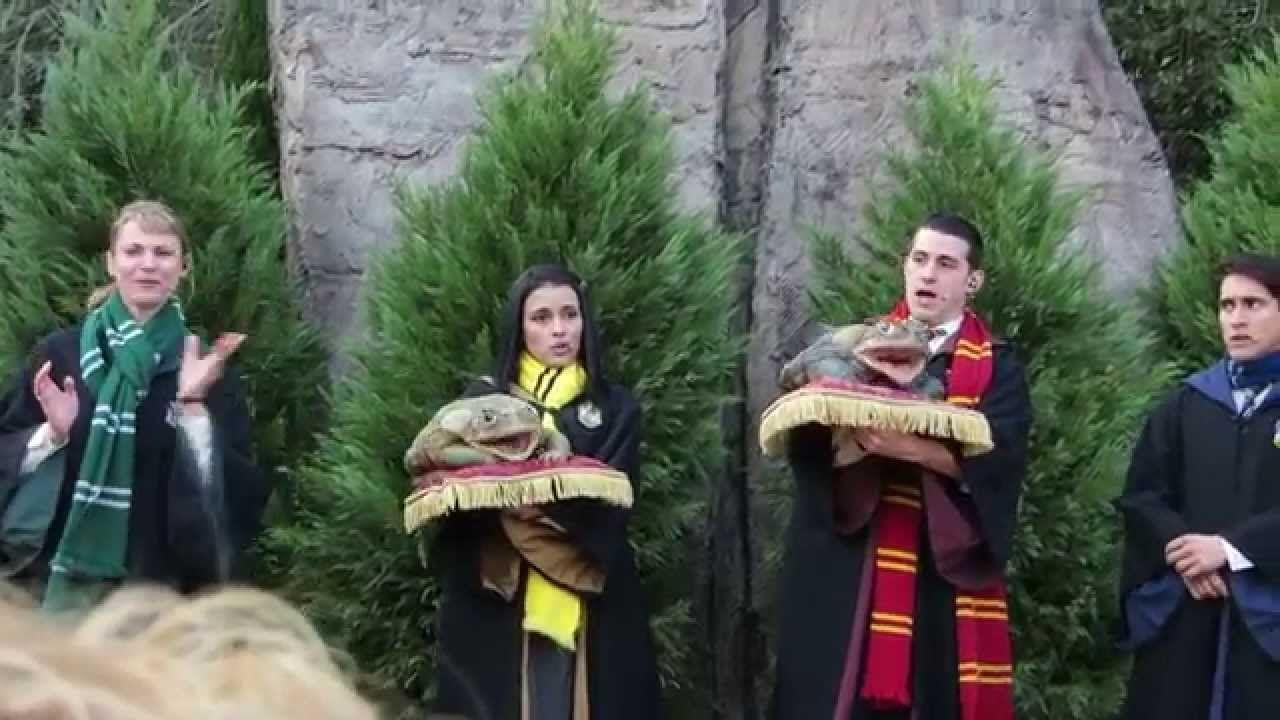 Wizarding World Of Harry Potter2