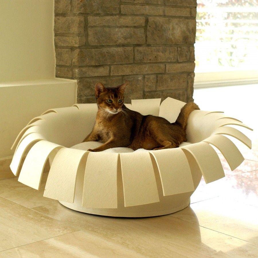 Cucce Design Per Cani cucce di design che arredano casa | bigodino