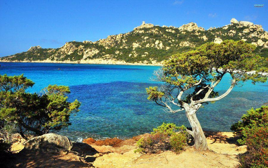 Corsica: guida pratica