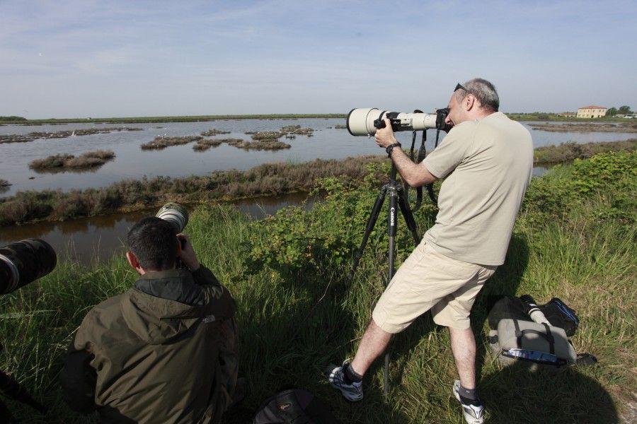 Escursioni di primavera sul delta del po