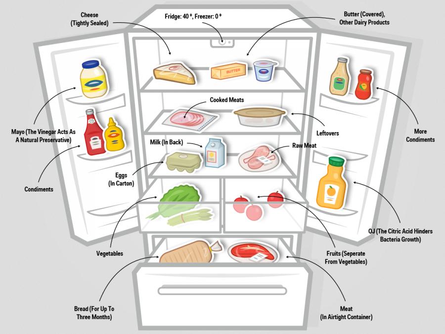cibo-frigo