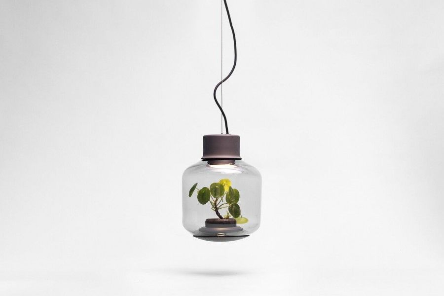 Nui LAMP MYGDAL