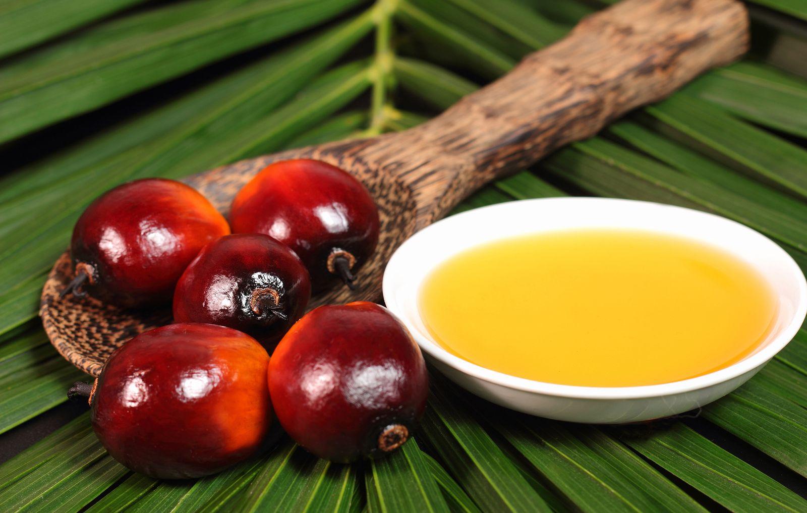 Sotto accusa alcune sostanze presenti negli oli vegetali raffinati