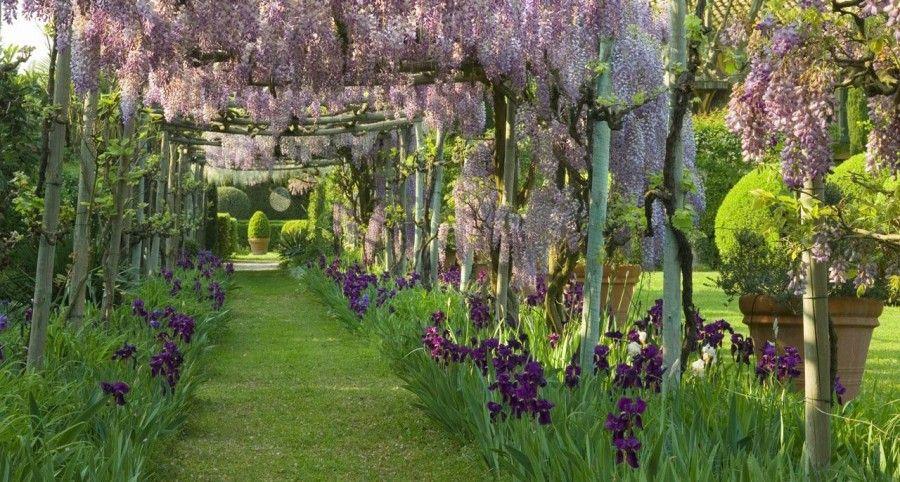 paysagiste-provence-creation-de-jardin-jardin-de-prestige-fond-jpg