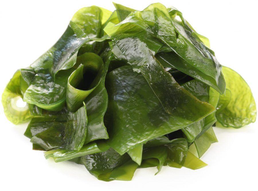 Le propriet delle alghe in cucina bigodino - Alghe in cucina ...