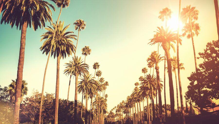 Los Angeles2