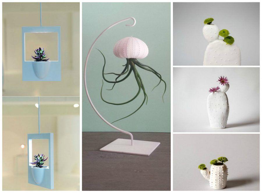 piante-grasse-e-vasi-design