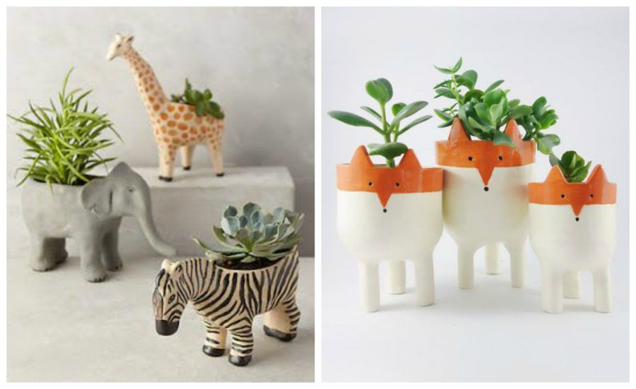 Arredare con le piante grasse vasi di design tutorial e - Vasi con piante grasse ...