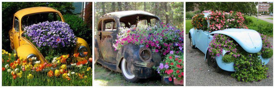Idee originali per la tua fioriera creativa bigodino - Fiori particolari da giardino ...