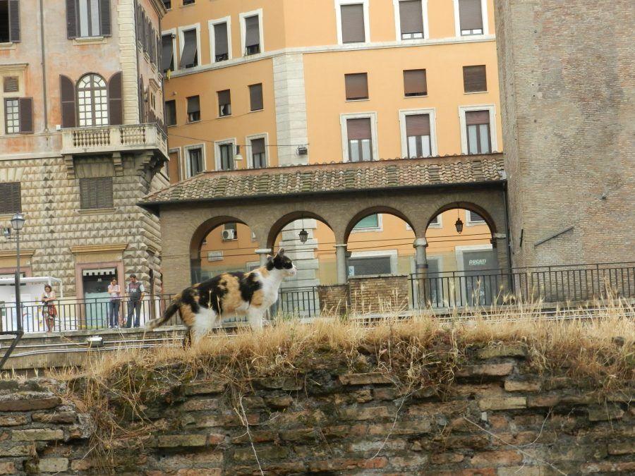 7 luoghi insoliti in Italia