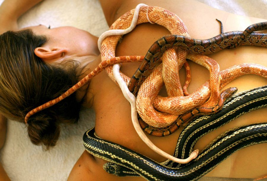 massaggio-serpente