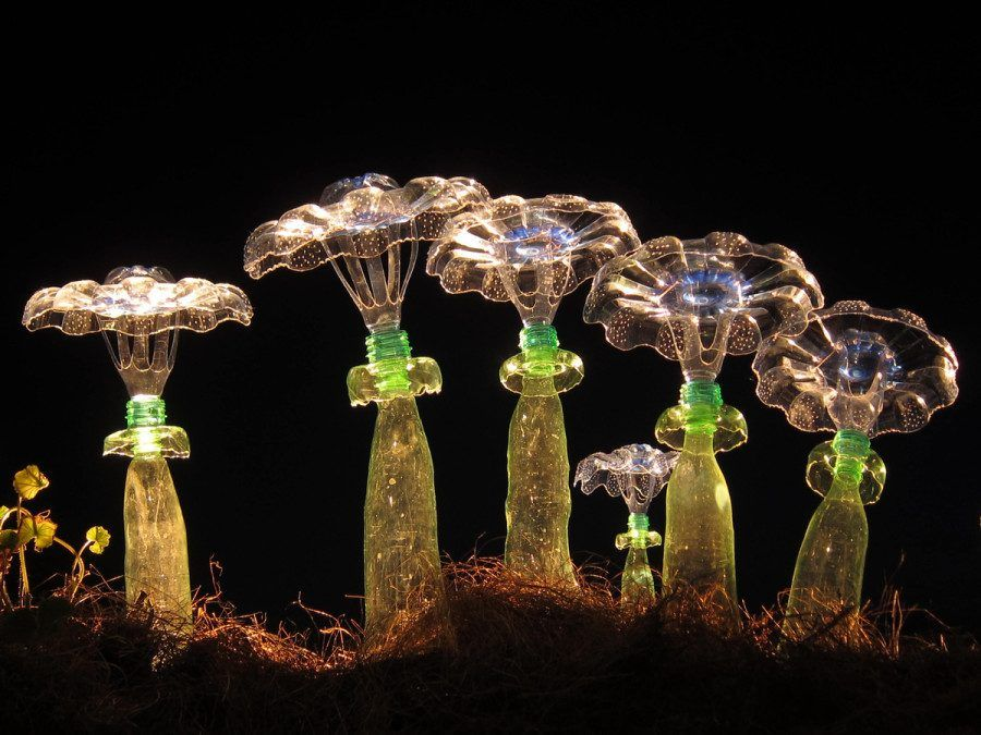 Veronika Richterová, The Collection of Cactuses, Photo Michal Cihlář