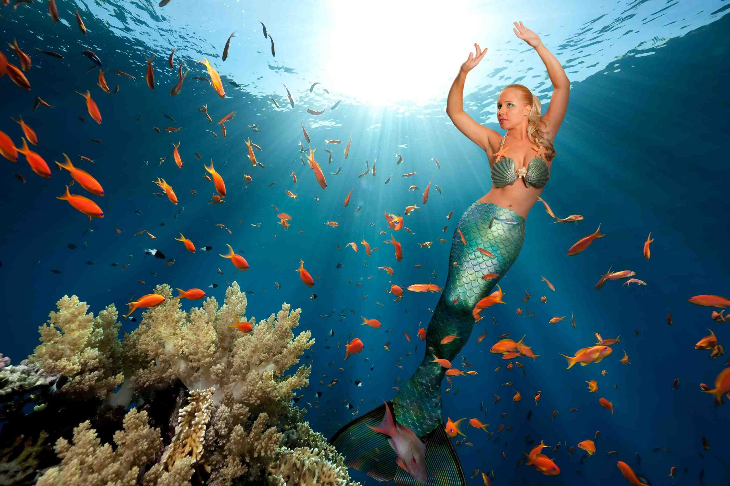Fitness Mermaid: diventa una sirena e dimagrisci