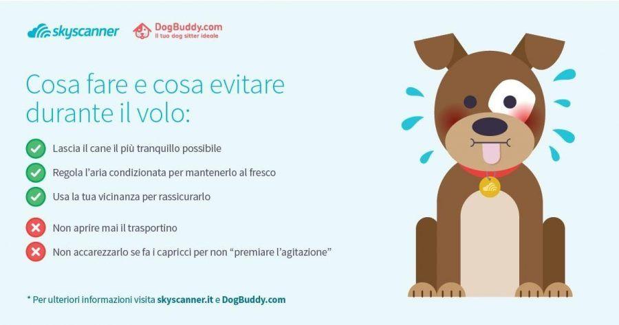 vacanze-con-il-cane1