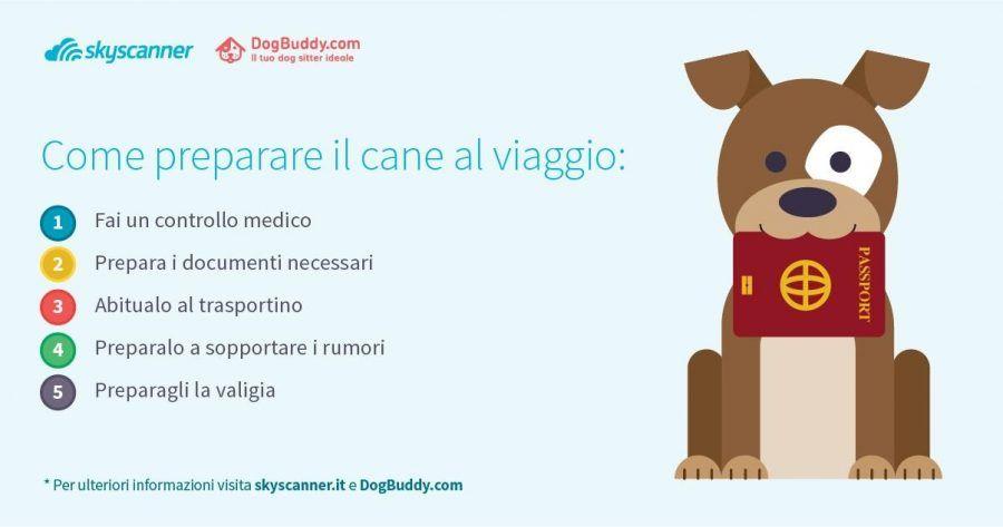 vacanze-con-il-cane2