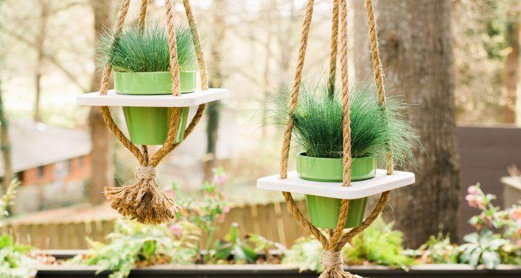 Come creare mini giardini sospesi bigodino for Vasi sospesi
