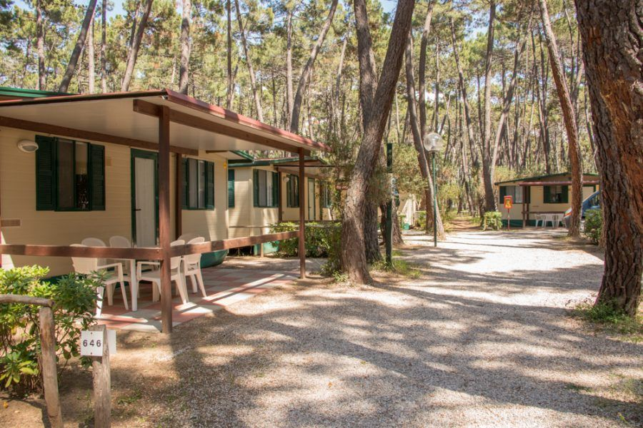 Camping Baia Verde di Punta Ala